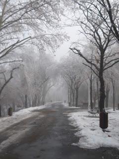 Ice age (ianuarie 2019)